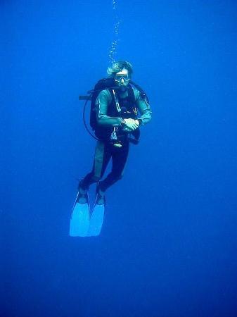 Papua Paradise Eco Resort: Bluewater
