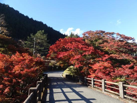 Oashi Canyon
