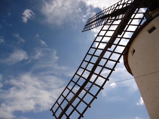 Quijoting La Mancha