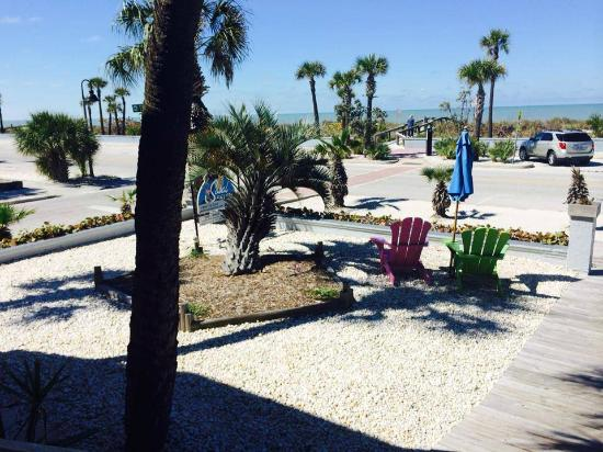 Sabal Palms Inn: View from front porch
