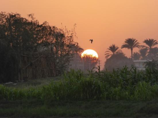 Egyptraveluxe - Day tours: Egypt has the best sunsets :-)