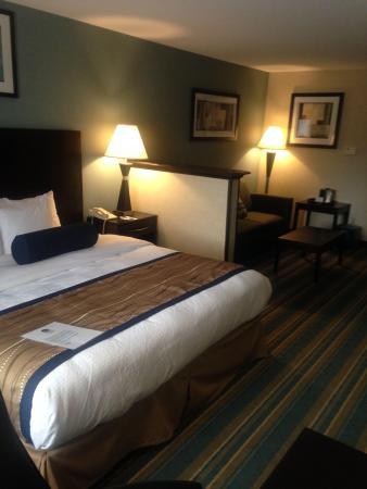 Best Western Plus Berkshire Hills Inn & Suites: King studio suite