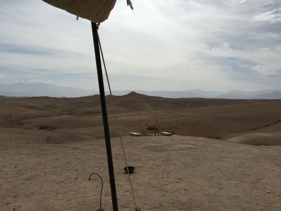 Scarabeo Camp : my hammac in the desert