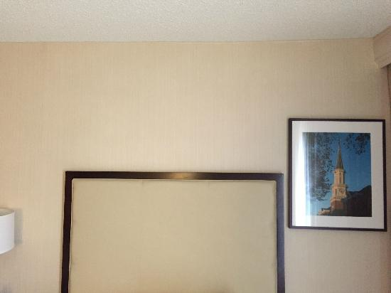 Crowne Plaza Hotel Old Town Alexandria: Who decided this painting would look good here?