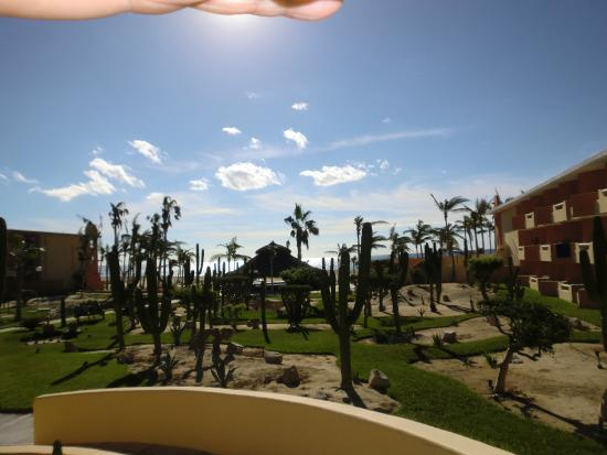Posada Real Los Cabos: View of the Cactus Garden