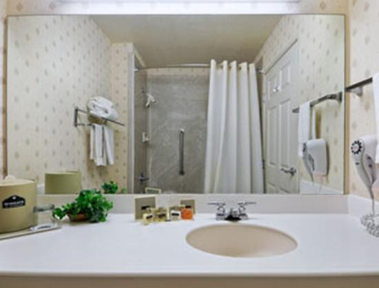 Wingate by Wyndham Dallas Love Field: Bathroom