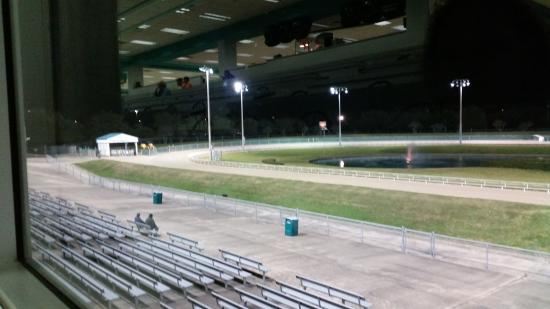 Gulf Greyhound Park La Marque 2019 All You Need To