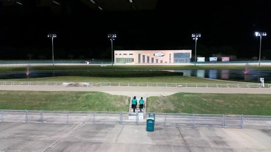 Gulf Greyhound Park: dogs racing
