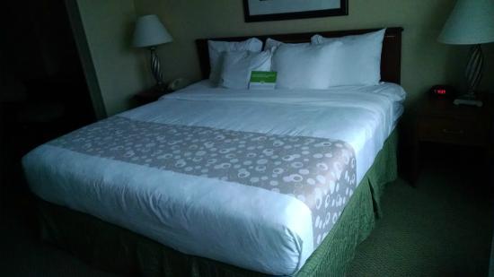 La Quinta Inn & Suites Denver Englewood Tech Ctr: Bedroom area of La Quinta Inn & Suites Denver Englewood Tech Center