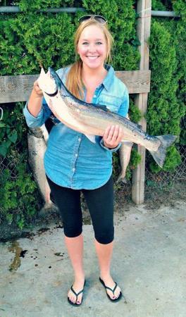 Lake michigan steelhead picture of bending limits for Michigan fish limits