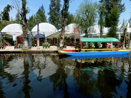 Being Welcomed Picture Of Xochimilco Mexico City Tripadvisor