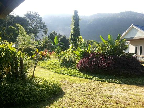 Walking around the garden, not so big but still beautiful! - Picture ...