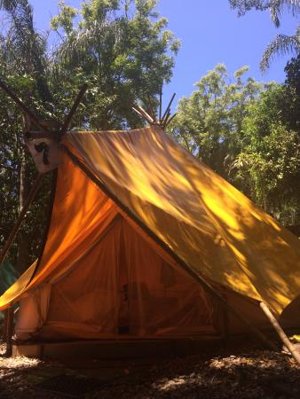 The Arts Factory Backpackers Lodge: Teepee