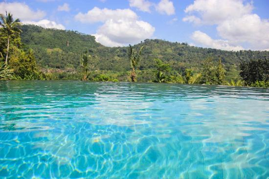 Very Good View From Swimming Pool Picture Of Lihat Sawah