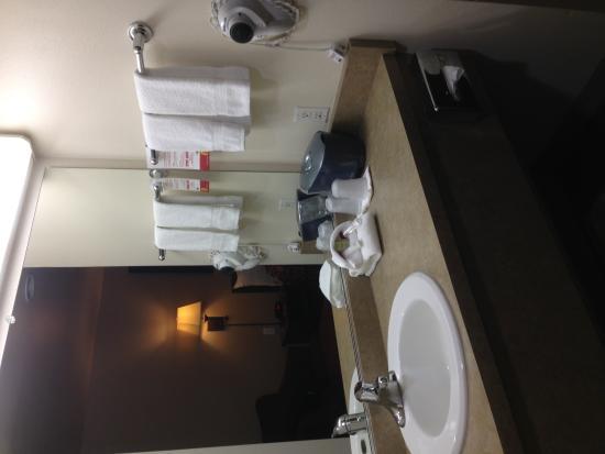 Grangeville, ID: Sink
