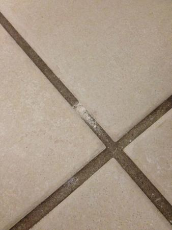 Incroyable Radisson Hotel Minneapolis/St. Paul North: White Powdery Stuff In Grout On  Bathroom