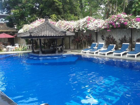 Villa Puri Ayu: Pool