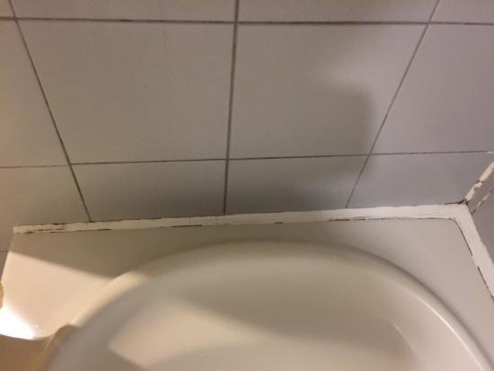 Chon Inter Hotel : Shower