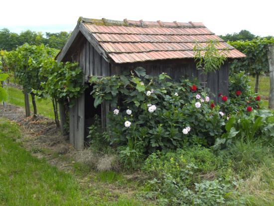 Absdorf, Autriche : Hiata Haus
