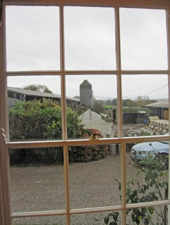 Hardwick Farm Bed & Breakfast: View of the working Dairy Farm from the dining room.