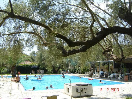 Thalero Holidays Center: thalero swimming pool