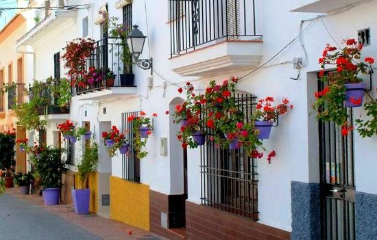Cafe Restaurants in Estepona