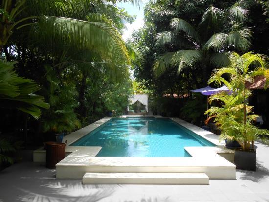 The Pavilion : Vue de la piscine depuis le hall de l'hôtel