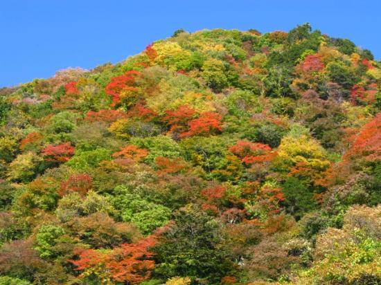 Ojiragawa Canyon : 1