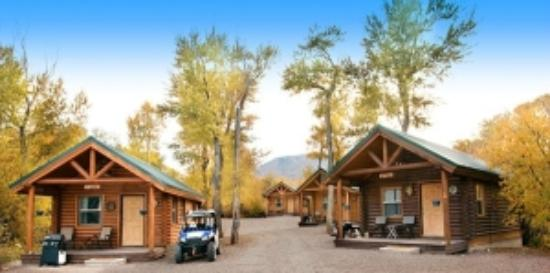 Connie & Greg's Pine Creek Cabins Resort: View of the cabins