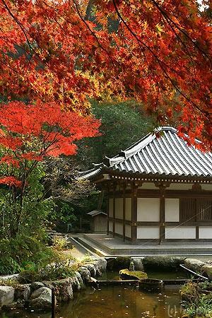 Munakata, Japonia: 鎮国寺の紅葉
