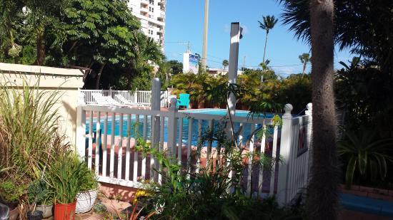 Sea Cove Motel: Tuin met zwembad