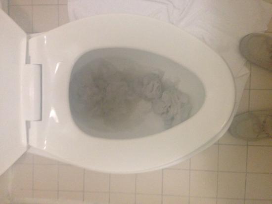 Masters Inn Tuscaloosa: Will not flush