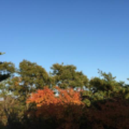 Hotel Harvest Nasu : 那須の空