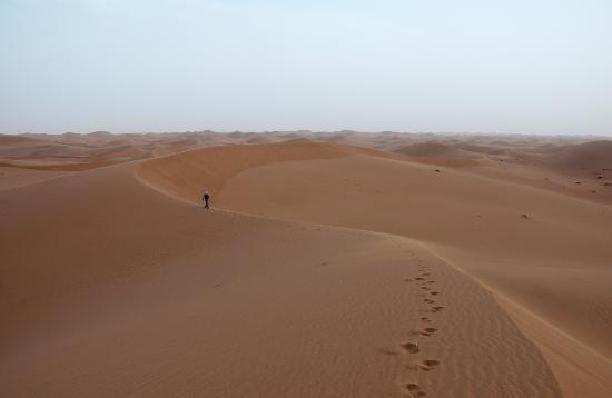 Sahara Para Todos -  Day Tours