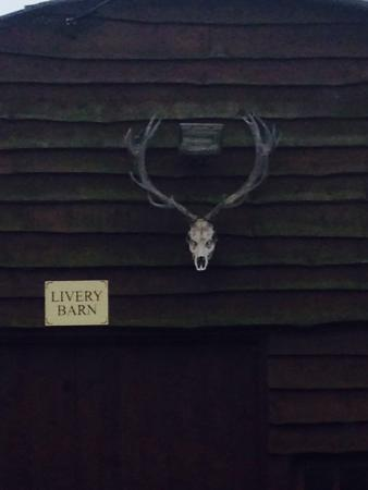 The Stables- Deer Park Farm: Opposite our chalet.
