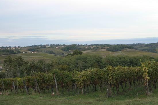 Loupiac, Francja: panorama