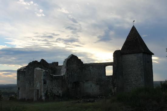 Loupiac, France: le vieux chateau