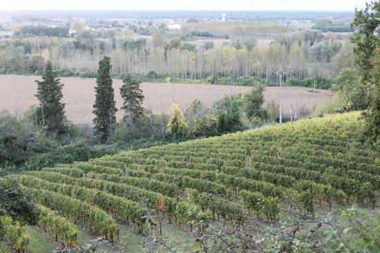 Loupiac, Francja: la vallée de la Garonne