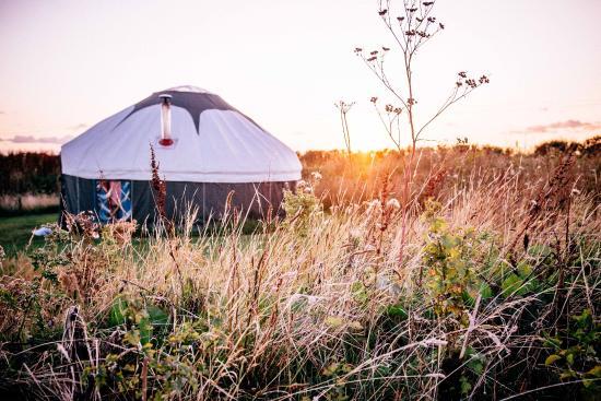 High Nature Centre: Yurt