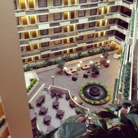 Embassy Suites by Hilton Atlanta - Galleria: Lobby