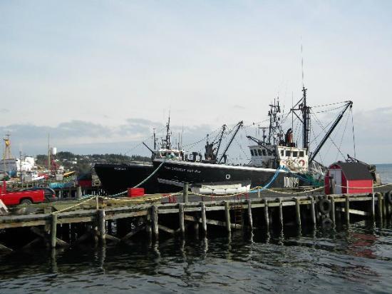 The Dockside Inn & Restaurant: harbor view too
