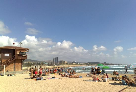 Meridian Beach: Пляж