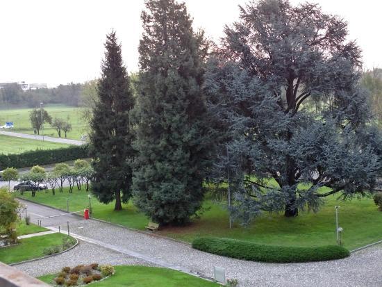 Hotel Villa Malpensa - Grounds