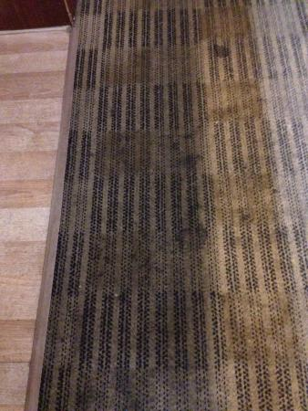 Extended Stay America - Phoenix - Airport - E. Oak St.: Our beautiful carpet.