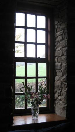 The Old Mill Soar: View from one guest lounge window, early morning