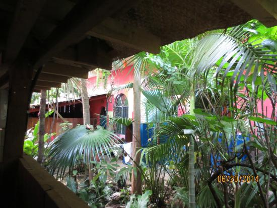 Youth Hostel Los Amigos: chilling in the bed, the view