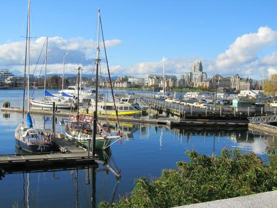 Landsea Tours and Adventures: Victoria harbour, Vancouver Island