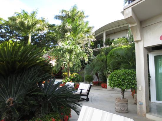 Orquidea del Sur : Out near the pool