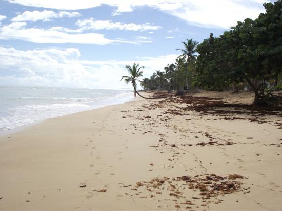 Sirenis punta cana resort casino & aquagames tripadvisor