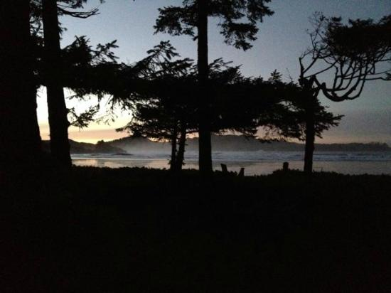 Chesterman Beach Bed and Breakfast : First light in the morning, seen from the living room